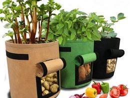 Comparatif des meilleurs sacs de plantation